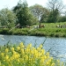 spring-on-the-riverside