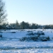 North Meadow Common