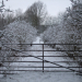rsz_cootes_meadow_access